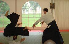 Lektioner i Aikido